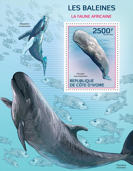 Whales - Issue of Ivory Coast postage stamps